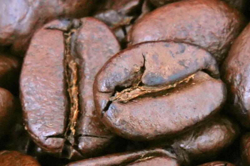 コーヒー豆のセンターカット